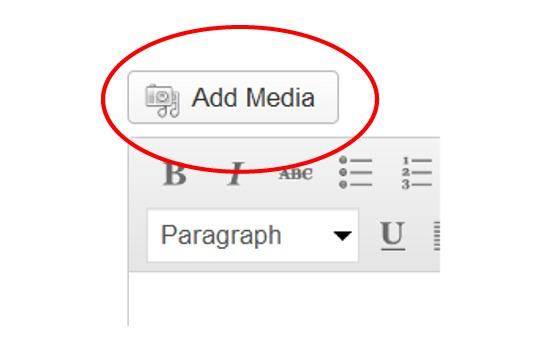 media-button