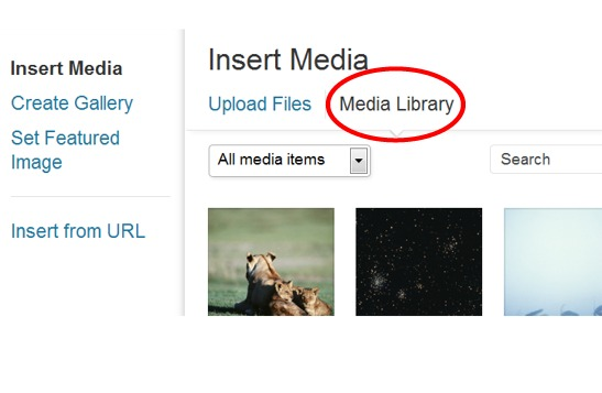 media-library-files