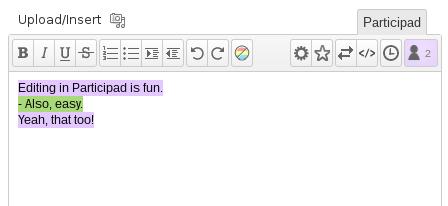 Пример работы плагина Participad в консоли WordPress