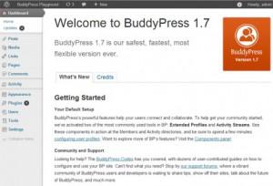 Новый экран приветствия в BuddyPress 1.7