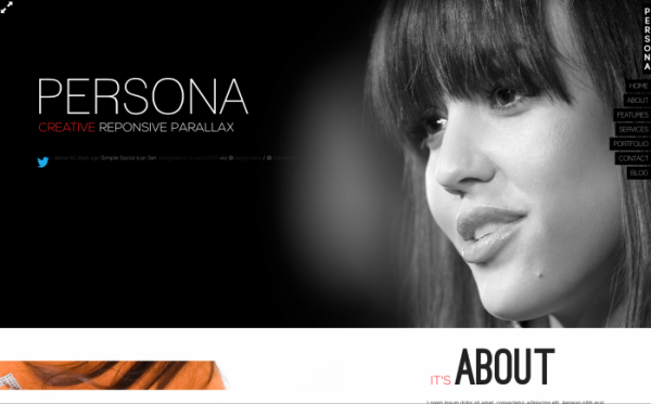 persona-wordpress-theme-700x436