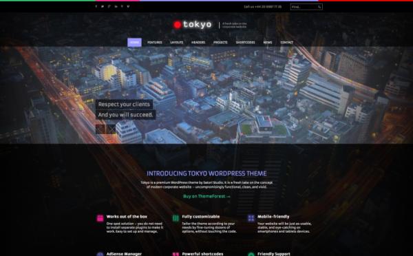 tokyo-wordpress-theme-700x435