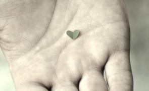 wordpress-heart-beat-api