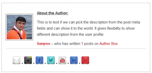 Author-Box-Plugin-With-Different-Description
