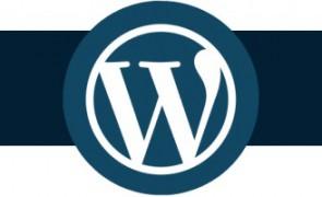 wp-logo-800