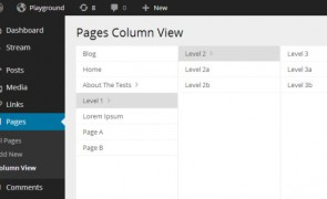 pages-column-view