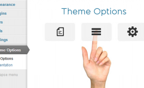 wordpress-theme-options