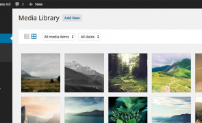 wordpress-media-library