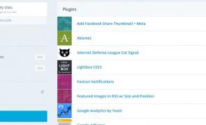 jetpack-plugin-management