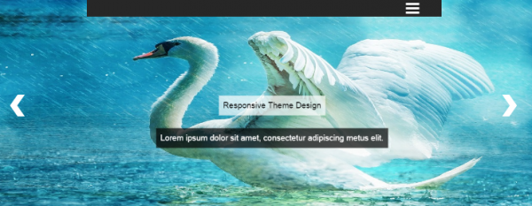 chronicle-theme-slider