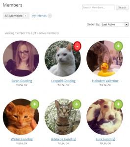 Измененный каталог членов BuddyPress