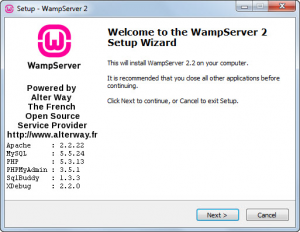 how-to-install-wamp-011