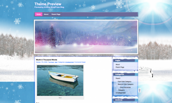 winter-wordpress-theme-700x418