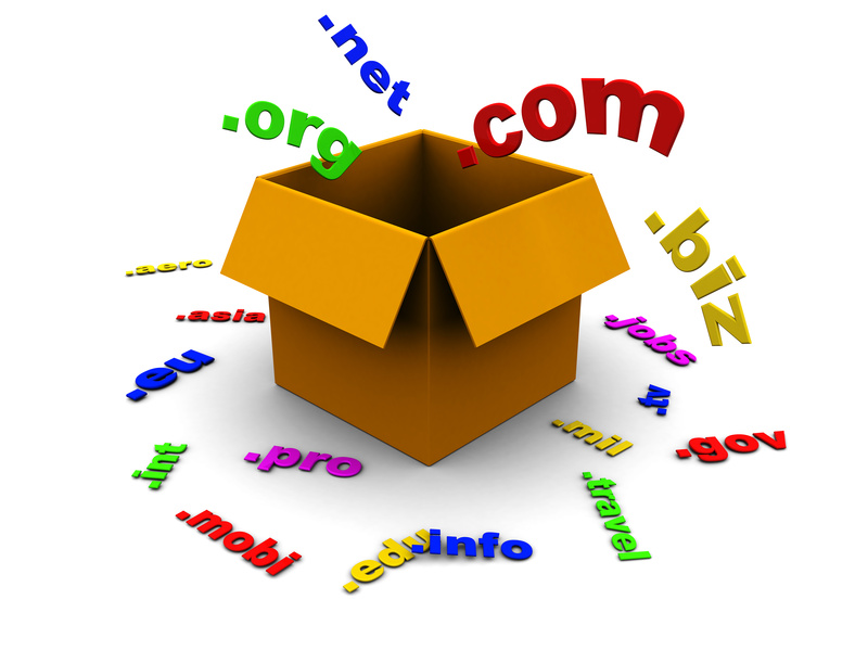 3d illustration of box with domain names inside