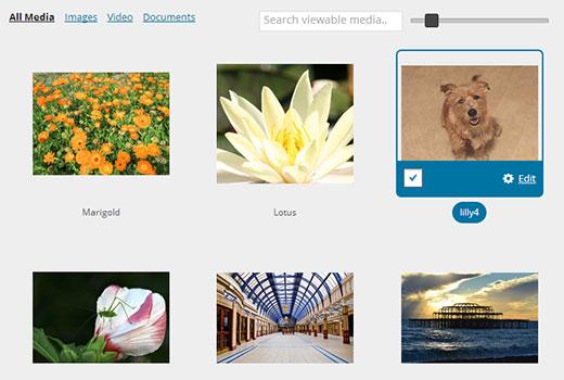 images-grid-media