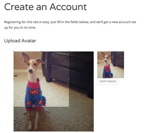 registration-avatar