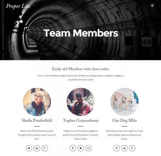 team-members